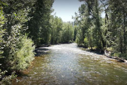 dog parks and hiking trails in sun valley, Idaho